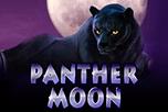 играть в игровой автомат Panther Moon
